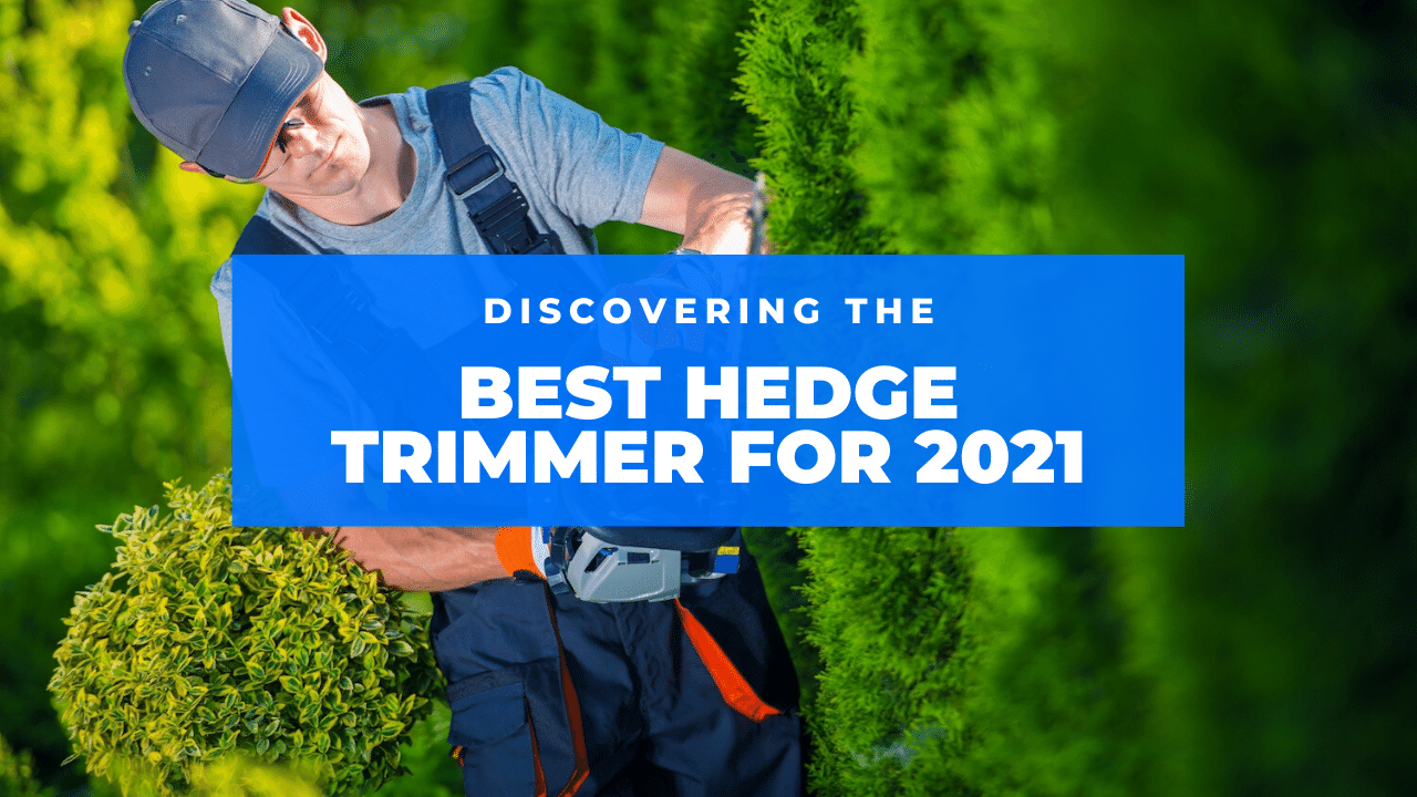 best hedge trimmer featured
