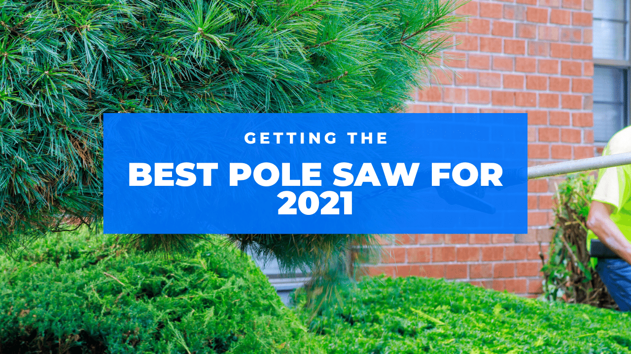 best pole saw featured
