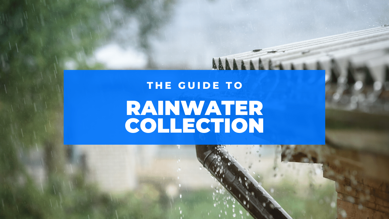 rainwater collection featured